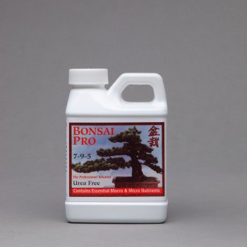 Bonsai_8oz